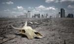 wasteland 150x150 image